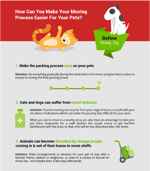 Best Care for Your Pets When You Move Your Home Infographic