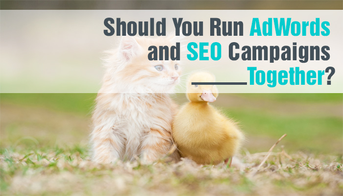 Should-You-Run-AdWords-and-SEO-Campaigns-Together